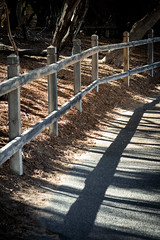 The path (.Stephen..Brennan.) Tags: da70 fremantle pentax pentaxk3 shadows perth westernaustralia australia au 70mm