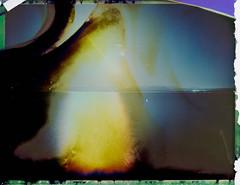 Night 6 (FP100c negative) (mmartinsson) Tags: 2018 night modelp instantfilm fujifilm 127mm negativescan negative longexposure mamiyasekor scan mamiyasekorp mamiyauniversal fp100c bleached polaroid epsonperfectionv700 film analoguephotography carboniaiglesias italien it