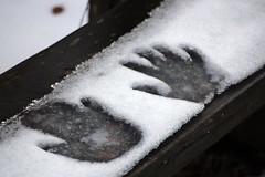 Hand Prints (gripspix (Easter Break 4 Family)) Tags: 20190216 schwenningermoos swamp sumpflandschaft moor snow schnee handabdrücke handprints bench bank