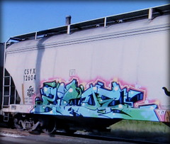 (timetomakethepasta) Tags: ziloe wdk freight train graffiti art grainer hopper csyx