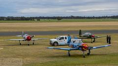 Roolette Roost (errolgc) Tags: australia aviation bluecamo darkgreen displayteam flightline nanchangcj6 nanchangcj6vhfce nanchangcj6vhfcy reddragonrightnose russianroolettes temoransw warbirdsdownunder2018 yak52vhygk112 yakovlevyak52 rednose