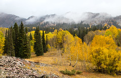 Amazing Fall (valentina425) Tags: sky land fall mountains colorado trees clouds mountain landscape field tree forest
