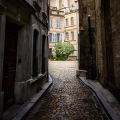 Hidden Within (Peter Weckesser) Tags: france alleyway monochrome courtyard cobblestonewalkway city buildings places international tree avignon vaucluse fr importedkeywordtags