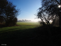 Portal (mark.griffin52) Tags: winter mist olympusem5 england hertfordshire beaconhill crops farmland countryside bluesky shadow sunlight sun trees landscape