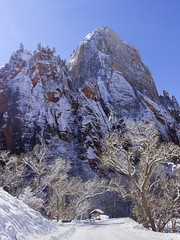 Zion National Park in the Snow (swissuki) Tags: zion national nature mountain landscape park sky snow usa ut utah greatwhitethrone
