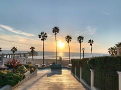 Manhattan Beach Cuddle (lpnada) Tags: sun beach palmtrees sunset manhattanbeach