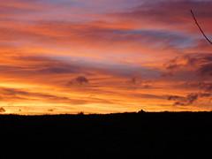 ....herrliche Farben.... (elisabeth.mcghee) Tags: abendrot abendhimmel abendsonne sunset sonnenuntergang himmel sky wolken clouds unterbibrach bäume trees wald forest oberpfalz upper palatinate