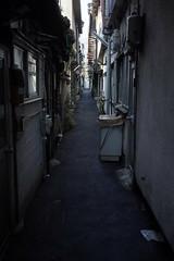 20190320a73_6151 (Gansan00) Tags: lce7m3 α7ⅲ sony japan 大分県 oita 日本 beepu 別府 landscape snaps ブラリ旅 03月