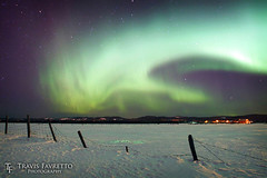 Auroral Storm (tfavretto) Tags: algoma auroraborealis buried cold farm fence fencepost field glow green longexposure meadow night northernlights post reflection saultstemarie shadow snow stars winter wire leighsbayroad