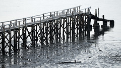 Costa Rica - Jetty at La Ensenada lodge (Rez Mole) Tags: costa rica jetty la ensenada