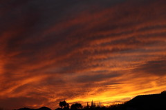 Sunset 3 5 19 #10 (Az Skies Photography) Tags: sun set sunset dusk twilight nightfall sky skyline skyscape rio rico arizona az riorico rioricoaz arizonasky arizonaskyline arizonaskyscape arizonasunset cloud clouds red orange yellow gold golden salmon black march 5 2019 march52019 3519 352019 canon eos 80d canoneos80d eos80d canon80d