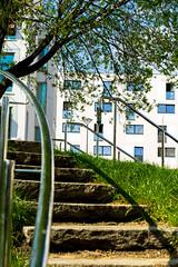 20190408-074 (sulamith.sallmann) Tags: architektur berlin brunnenviertel deutschland europa frühjahr frühling geländer gesundbrunnen handlauf mitte stufen treppe treppengeländer wedding sulamithsallmann