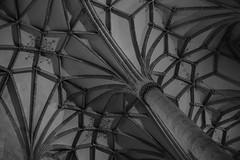 Delicate (CleliaMal) Tags: monochrome church pillar bw ulm ulmermünster