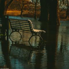 Wasserbank (hdbrand) Tags: 2019 aposummicronm1290 januar leicasl objektiv rügen imjaich putbus mecklenburgvorpommern deutschland de reflection spiegelung