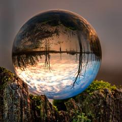 "Dead trees (mandyhedley) Tags: crystalball deadtrees sunrise cramlington uk england trees extraordinarilyimpressive ""northeast england"" landscape green blue lensball glassball flickrexploreme refraction"