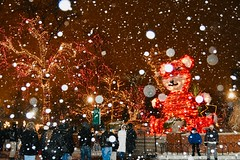 Snowing at Lincoln Park Zoo Zoolights (stevelamb007) Tags: crowd snowing zoolights illinois chicago d7200 nikon stevelamb