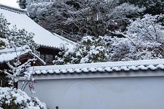 祇園八坂2・GionYasaka (anglo10) Tags: japan kyoto 京都府 東山 祇園 雪 snow 建築物 architecture 寺院 temple
