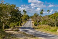 Countryside around the Camajuaní road. (lezumbalaberenjena) Tags: camajuani camajuaní cuba villas villa clara campo countryside lezumbalaberenjena 2019 carretera road