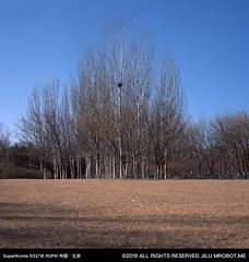 fullsizeoutput_1964 (magi_go) Tags: olympicforestpark beijing film