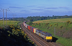 FLR 86604+86xxx takes the evening Felixstowe-Coatbridge intermodal up Belstead Bank, south of Ipswich, during May 1995. (mikul44171) Tags: 86604 belstead belsteadbank ipswich intermodal gorse spring evening fullsun multiple freightliner msc containers