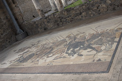 (Nose in a book) Tags: holiday italy pompeii pompeiiscavi casadelfauno