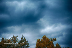 Rain on the Way (Photographybyjw) Tags: rain way strong weather front moving clouds building up shot north carolina ©photographybyjw rural country trees foliage
