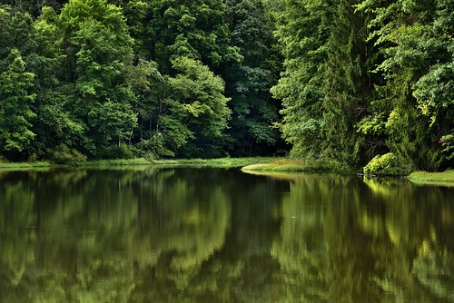 I Have Found Serenity Amongst the Still Waters of Our National Parks (Cuyahoga Valley National Park)