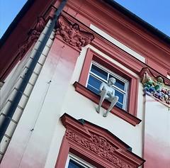 Brno (stefan aigner) Tags: brno brünn czechrepublic statue tschechien tschechischerepublik window