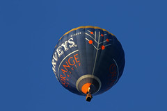 2018_09_02_0372 (EJ Bergin) Tags: landscape westsussex sussex wisboroughgreen balloonfestival wisboroughgreencharityballoonfestival balloon balloons