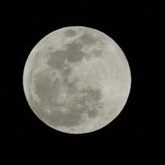 Pre Blood Moon (sirbarry) Tags: moon sky
