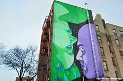 Face to Face (Trish Mayo) Tags: murals art paintedwalls bellaphame 501seestreets bedfordpark bronx