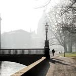 Foggy morning thumbnail