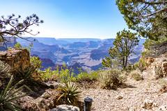 20180606 Grand Canyon National Park (141).jpg (spierson82) Tags: grandcanyon grandcanyonnationalpark summer arizona vacation geocaching landscape canyon grandcanyonvillage unitedstates us