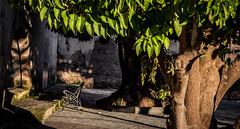 El rincón. (Ricardo Pallejá) Tags: falset priorat pueblo rural ricardopallejaherrera nikon parque luces sombras lights shadows tarragona sol sun