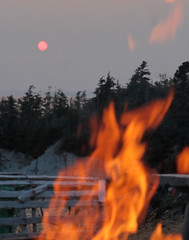 Evening Heat (peterkelly) Tags: digital canon 6d northamerica canada newfoundlandlabrador cavendish trees forest whitepoint sunset dusk evening fire flames lit heat hot sun lobstertrap