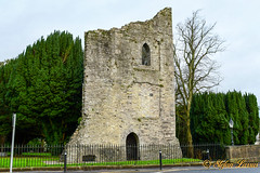 Maynooth Castle County Kildare (Salmix_ie) Tags: maynooth castle county kildare ireland 13th century geraldines fitzgeralds powerful families earls houses garret mór great king england og keep constructed 1203 fortification city nikon nikkor d500 january 2019