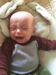 """Sam Cries in His Bassinet • <a style=""""font-size:0.8em;"""" href=""""http://www.flickr.com/photos/109120354@N07/46374404105/"""" target=""""_blank"""">View on Flickr</a>"""