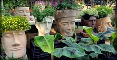 Heads of the Spring Garden Festival (gatorgalpics) Tags: kanapahabotanicalgardens gainesville florida springgardenfestival 129explore