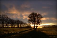 Happy New Year (Renata1109) Tags: gras sonnenaufgang baum himmel sonne feld tree sun sky wolken clouds outdoor fantasie bayern deutschland bavaria germany sunrise