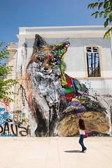 Baixa (RossellaRatti) Tags: lisbona lisboa pastel baixa alfama lxfactory europe lisbon portogallo portugal travel murales oceano atlantico