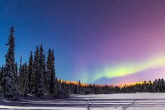 """""""Nuit nordique"""" (Luosto, Finland) (Nicolas Luginbühl) Tags: luosto finland lapland auroraborealis north winter"""