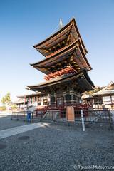 Narita-san Shinsho-ji Temple (takashi_matsumura) Tags: naritasan shinshoji temple narita chiba japan ngc nikon d5300 成田山 新勝寺 成田市 千葉県 afp dx nikkor 1020mm f4556g vr