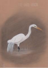 The White Heron. (Klaas van den Burg) Tags: whiteherron drawing ne zealand pencil charcoal