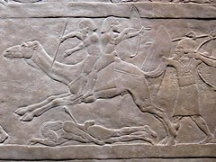 Bas Relief - Assyrian Troops Fighting Bedouin Nomads (2). Ashurbanipal Exhibition, British Museum, 5th February 2019 (Phil Masters) Tags: bedouin bedouinnomads camel basrelief britishmuseum 5thfebruary february2019 london museum iamashurbanipalkingoftheworldkingofassyria iamashurbanipal kingoftheworld kingofassyria ashurbanipal assyria ashurbanipalexhibition