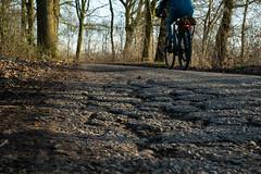 February Bicycle Commute 2 of 2 (beeldmark) Tags: fiets nederland vroegeochtend woonwerk weg provincieutrecht thenetherlands オランダ commute netherlands road bicycle cycling dawn earlymorning fietsen ochtendstond panasonic gm1