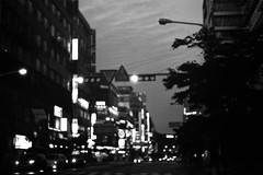 .plunge into the silence. (Camila Guerreiro) Tags: film bw ilford camilaguerreiro analog seoul southkorea ilfordpan100 pentaxmesuper grain night lights
