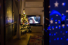 ***** (Valeria Tofanelli) Tags: street television light space stars eyes mood composition christmas streethouse