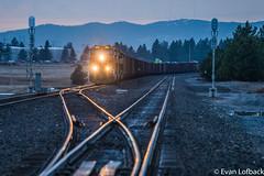 BNSF 6344 East at Hauser, ID (evanlofback) Tags: railroadbnsf spokanesub enginebnsf bnsf6344 gevo h3 coal hauser cloudy winter signals mountains
