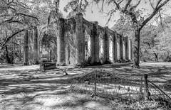 Old Church Ruins 2 (dshoning) Tags: church ruins bw southcarolina trees fence