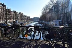 DSC_0396 - Copie (elisa.savio) Tags: amsterdam trip travel voyage landscape bike photographer nikkor nikon